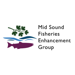 Mid Sound Fisheries Enhancement Group